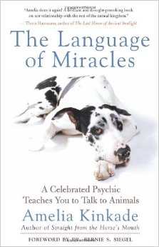 The Language of Miracles - Amelia Kinkade