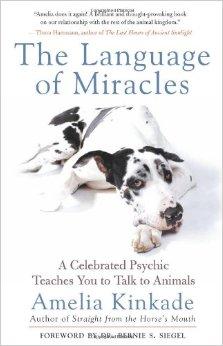 The Language of Miracles - Amelia Kinkade