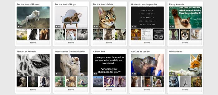 Pinterest animal communicators